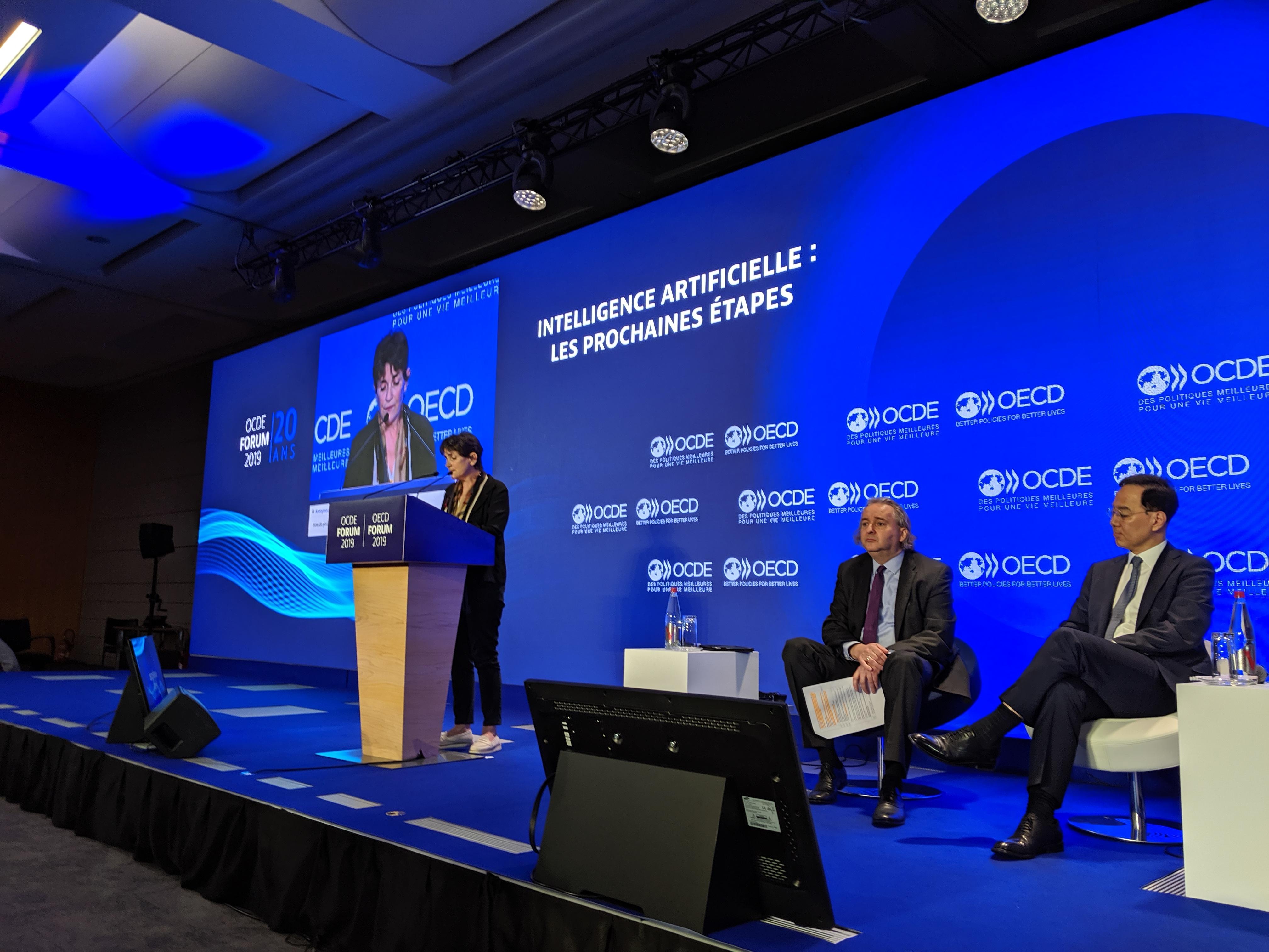 HumaneAI partners contribute to OECD AI principles